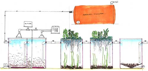 Wastewater Treatment | Jellobrain